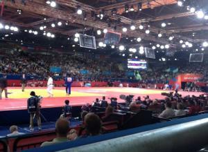 De Judowedstrijd